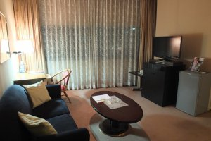 Living area in the Deluxe Room
