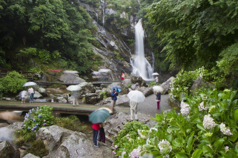 Tire partido de um dia chuvoso na cachoeira de Mikaeri