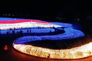 Beautiful by day, the flower beds are transformed at night