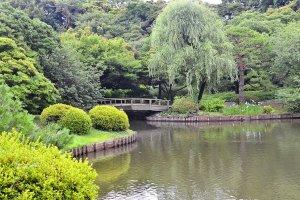 เป็นสวนที่ให้ความรู้สึกสงบและผ่อนคลายท่ามกลางความวุ่นวายของเมืองใหญ่