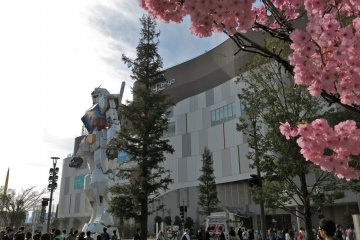 <p>During the spring time, visit the Gundam statue and view cherry blossoms in full glory!</p>