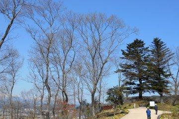 공원 가장자리에는'지렁이 나무들'이라고 불리는 전망대가 있다. 이 갑판은 1970년 NHK 시대 드라마의 이름을 따서 지어졌다