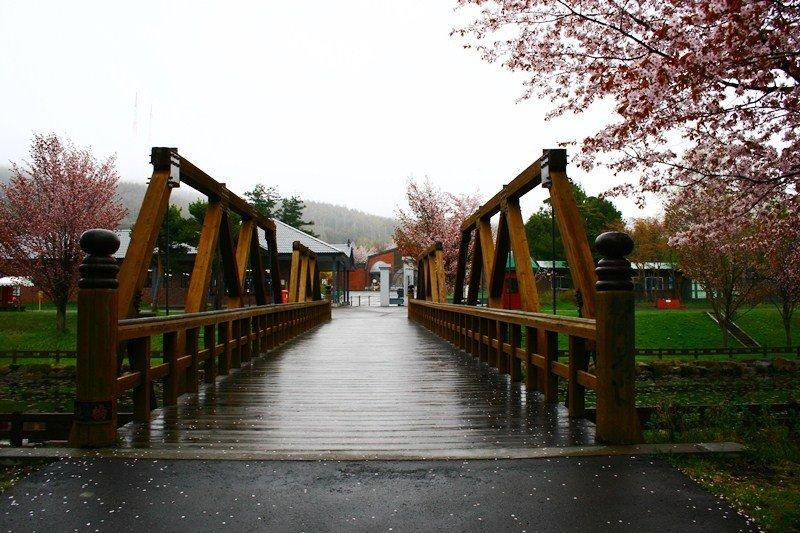 <p>สะพานข้ามไปเขตพิพิธภัณฑ์</p>