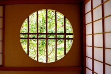 둥근 창문 너머의 신선한 녹색