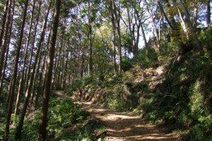 Paisagem deslumbrante ao longo do trilho de caminhada das montanhas Hiwada-Takasashi-Monomi