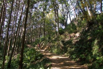 Stunning scenery along the Hiwada-Takasashi-Monomi Mountains hiking trail