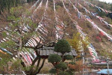 Breathtaking natural scenery by the Jinryu river inChichibu