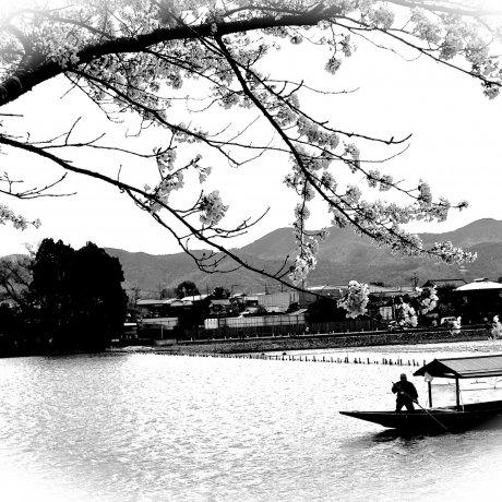 Togetsu Bridge and Riverside Area