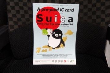 <p>Hello Suica, I love you</p>