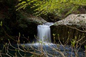 伊豆の秘境: 七滝 ななだる
