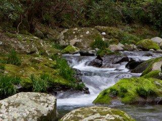 산책로 전체에 걸쳐 있는 강바닥은 사랑스러워 보인다