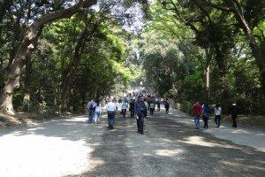 ป่ากลางกรุงและทางเดินไปยังศาลเจ้า