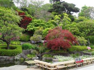 สวนญี่ปุ่นแท้