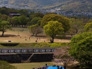 To get this view of the adjoining parkand hills of Kumamoto, you need to go up to the top floor of the main tower. As you can see by the blue plastic cover on the grass, as long as there are some cherryblossoms left, hanami(cherry blossom viewing) parties are popular, just as anywhere else.