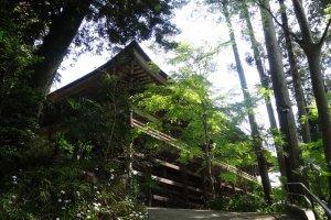 อาคารฮอนโดะ (Hondoh) หรืออาคารหลักของวัด ตั้งอยู่บนเนินเขา สร้างด้วยไม้ทั้งหลัง