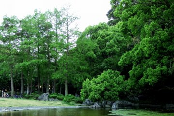 <p>Benten Pond surrounded by lush greenery</p>