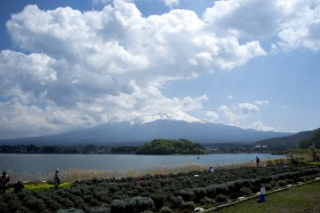 <p>Closest to Mount Fuji I&#39;ve ever got. Take away the clouds and the view would have been perfect!</p>