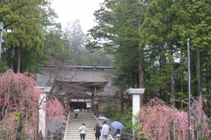 The Entrance. It is said that Kobo Daishi (the Japanese famous monk who propagated Buddhism in Japan) referred to the whole mountain as Kongobuji