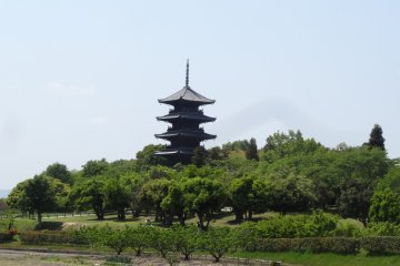 <p>The beautiful Bitchu-Kokubunji temple and its pagoda</p>