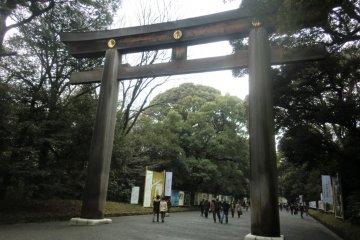 Meiji Jingu - Tokyo's most famous shrine