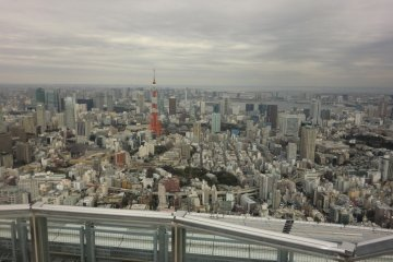 View of Tokyo Tower from the Mori Building in Roppongi Hills