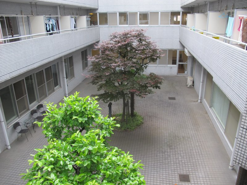 <p>The courtyard</p>
