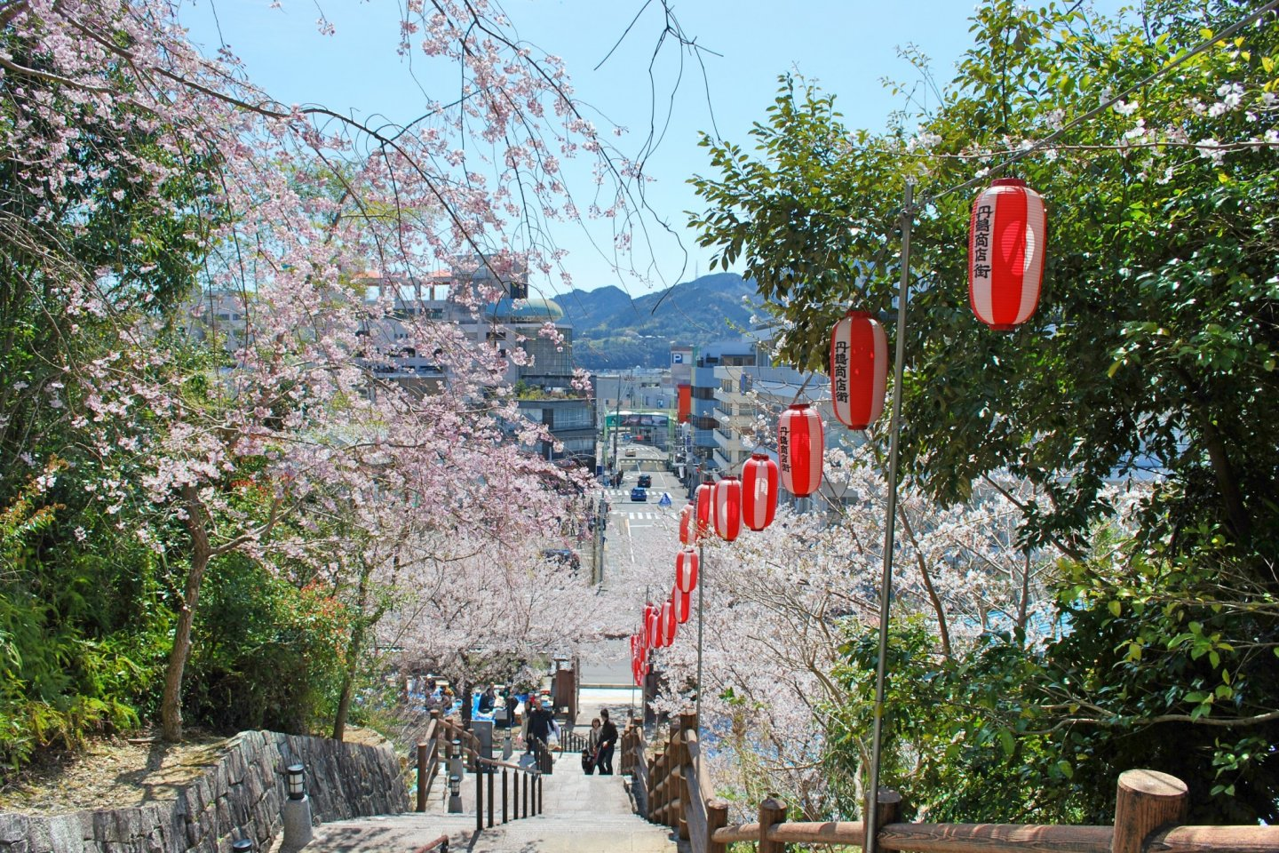 View of the main castle entrance during hanami season.  Tankaku Castle is one of the best spots in Shingu to enjoy cherry blossoms in spring.