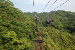 Up, up and away on the ropeway