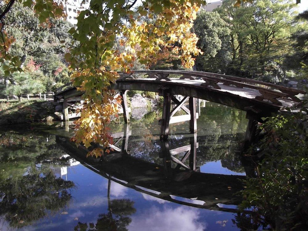 Bầu trời và mặt dưới của cây cầu cực kì rõ
