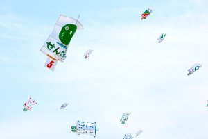 Kites in the afernoon breeze.