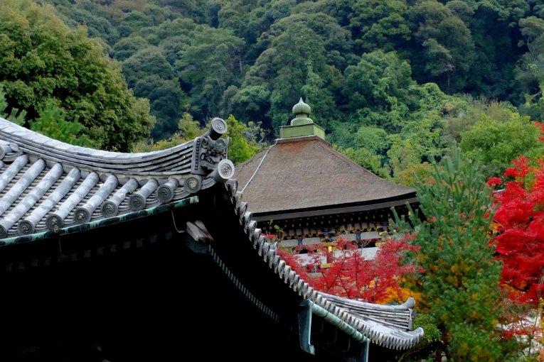 ねねと高台寺: 京都