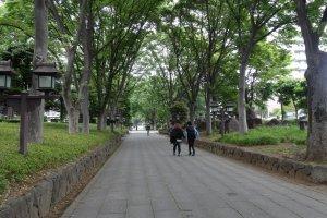 ทางเดินเข้าสู่่ศาลเจ้าที่เรียงรายไปด้วยต้นไม้ใหญ่ร่มรื่นมาก