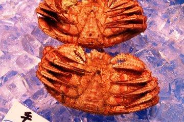 <p>Hokkaido Crab</p>