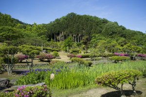 The beautiful Ajimanogarden, where 15 poems from the Manyōshū(万葉集) are inscribed into stone.