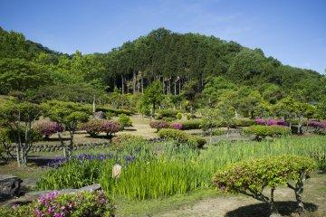 Красивый сад Адзимано, где находится камень, на котором высечены 15 стихов из Манъёсю