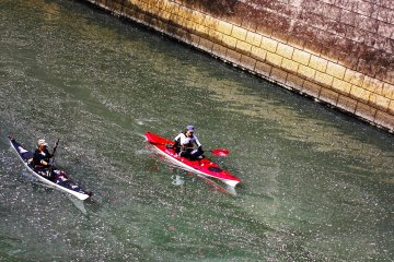 <p>There were quite a few people taking advantage of the calm water, warm weather and beautiful scenery by having a short kayak ride along the river. It was also nice to see the first&nbsp;petals floating on the water&mdash;a perfect day for kayaking.&nbsp;</p>