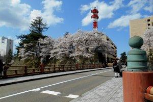 福井城跡の「御本城橋」