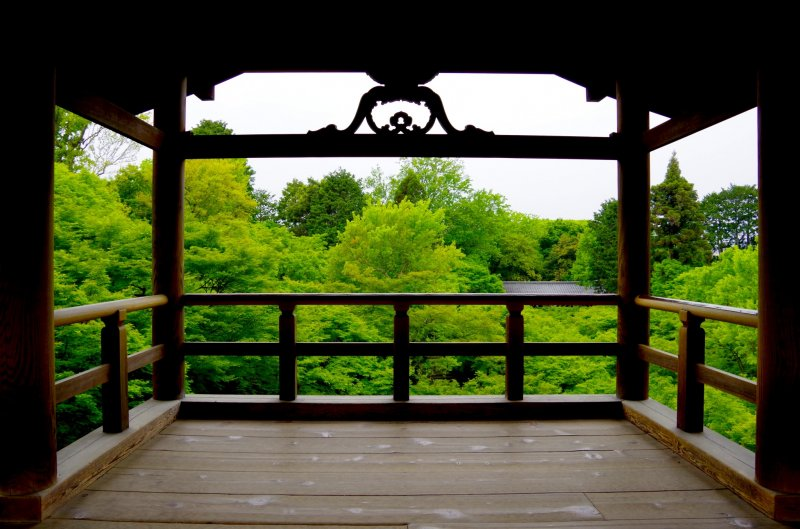 <p>Wooden terrace view of the green valley</p>