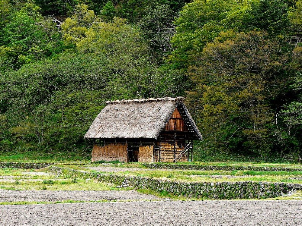 畑の中にぽつんと建つ小さな茅葺き屋根の家