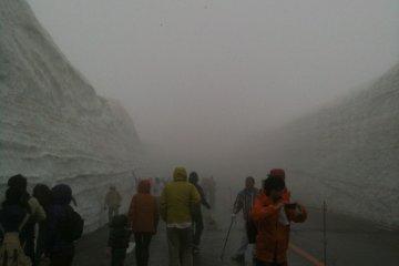 กำแพงหิมะแห่งโทยาม่า