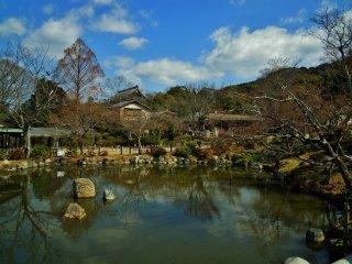 사찰 단지 주변에 다양한 연못