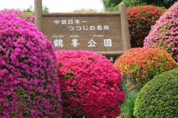 <p>The entrance of Tsurumine Park</p>
