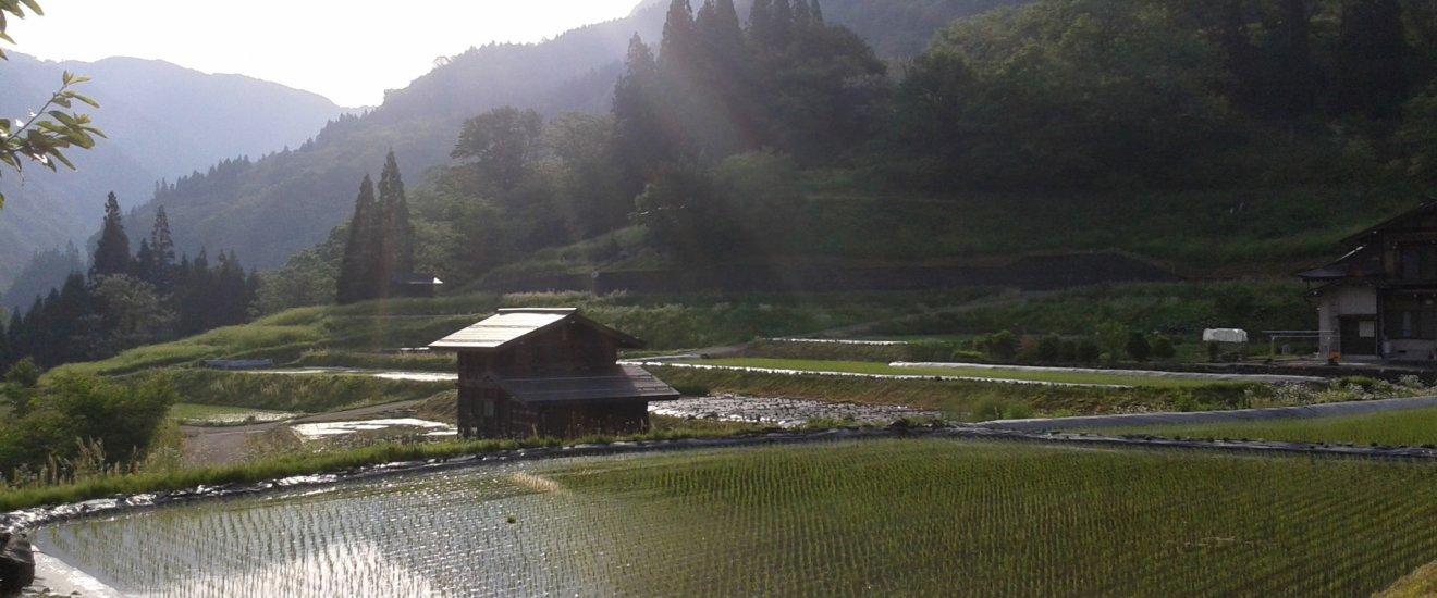 Vue sur le Satoyama à Hida