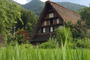 Maison de style gasshō-zukuri, typique des hameaux de Shirakawa-go et de Gokayama