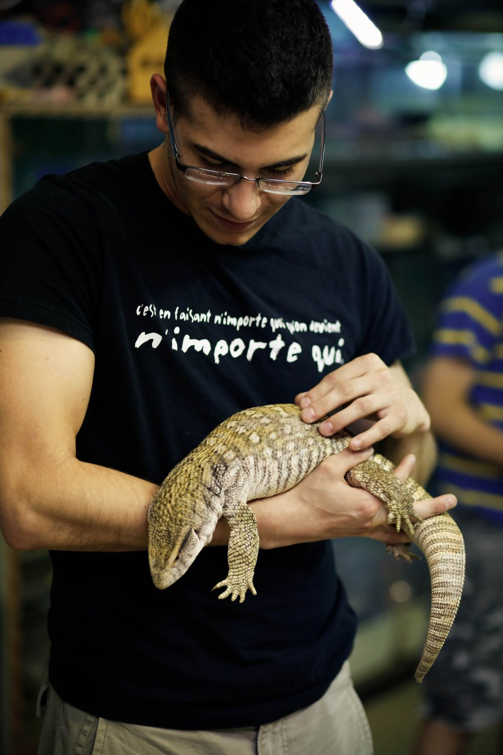 Yes, you can take this monitor lizard in your hands and it would sit there quietly without even moving.