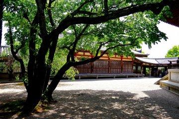 <p>To-in (Eastern) Precinct of Horyu-ji Temple</p>