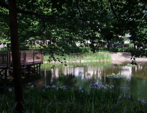 Công viên rừng Bunko