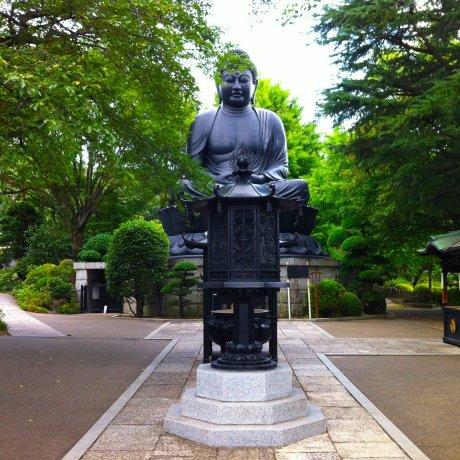 พระใหญ่ที่โตเกียว