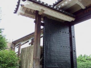 下から眺める桜門