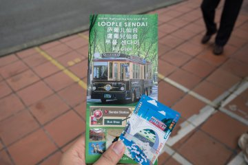 <p>The information brochure in English and the day pass ticket&nbsp;</p>
